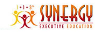 Synergy Team Power